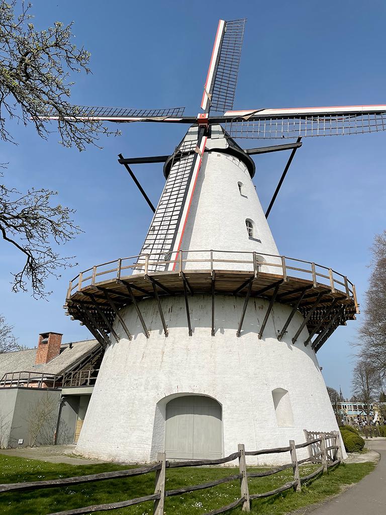 Boechout - Windmill